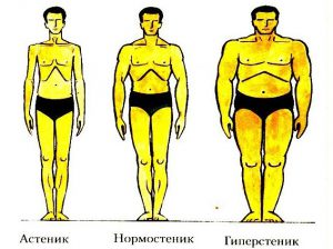 Типы телосложений мужчин