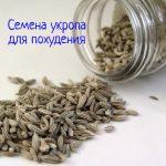 Как принимать семена укропа для похудения?