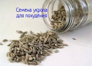 Семена укропа для похудения