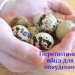 Полезны ли перепелиные яйца для похудения?
