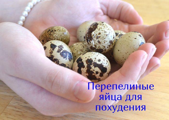 Перепелиные яйца для похудения