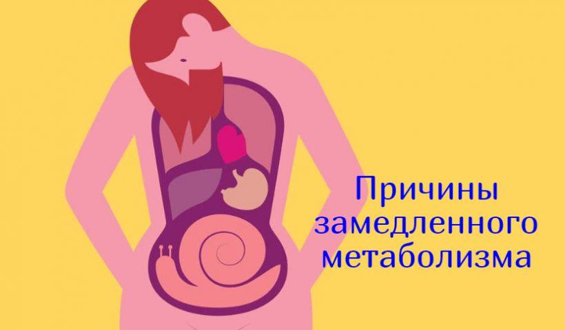 Замедленный метаболизм причины