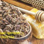 Прополис пчелиный – применение и свойства