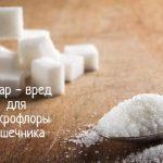 Сахар – вся правда о вреде для здоровья