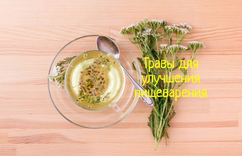 Травы для пищеварения