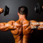 Эффективные упражнения для мышц спины